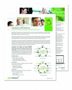 Disprax Openbravo ERP Platform